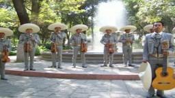 Mariachi Viajeros de Guanajuato, Camino de Guanajuato