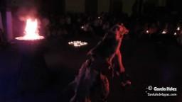 Grupo de música y danza prehispánica Venado Azul